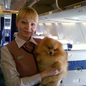Alexandra_stylla 30 ani Brasov - Matrimoniale Brasov - Anunturi fete
